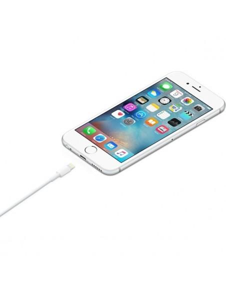 Cable Apple Lightning USB 2 Mts al mejor precio en Paraguay Tienda Oficial