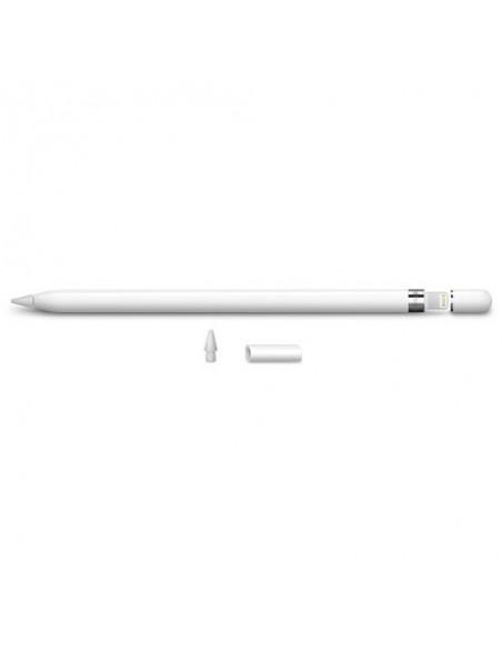 Apple Pencil Primera Generación para IPAD al mejor precio en Paraguay Tienda Oficial